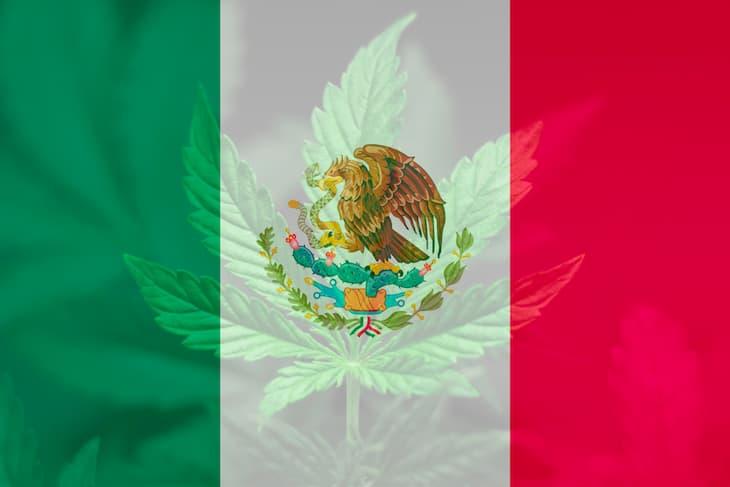 cannabis legalization in mexica