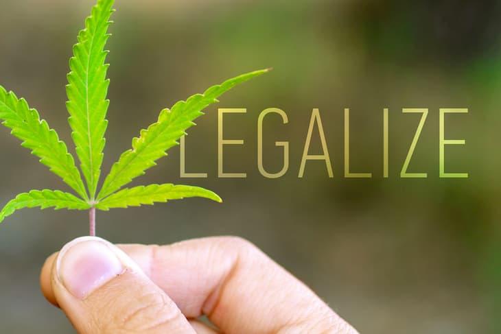 recreational cannabis legalization
