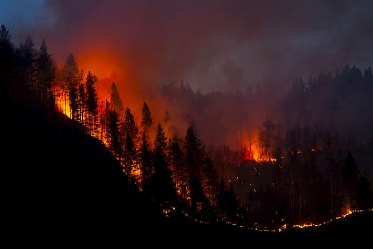 California wildfire impact to legal cannabis market