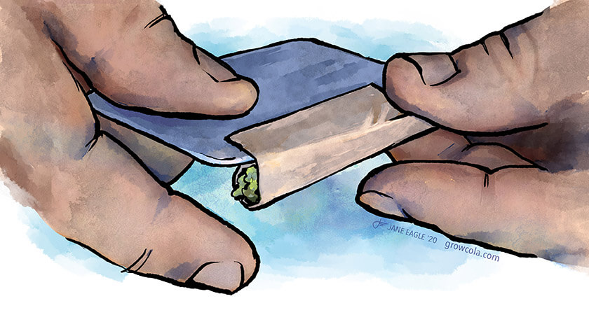 Roll a joint using a credit card