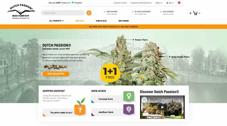 Dutch Passion seeds review