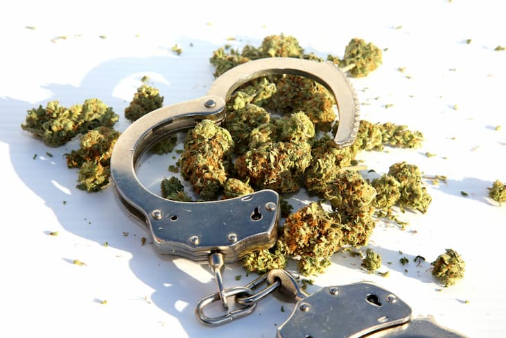 cannabis-related arrests