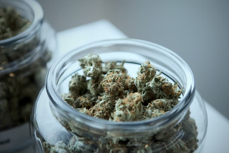 cannabis in the jar