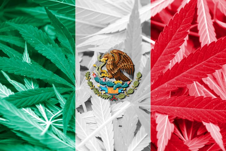 the bill of Marijuana legalization in Mexico