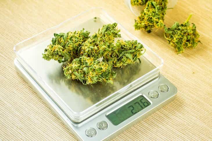 declare cannabis