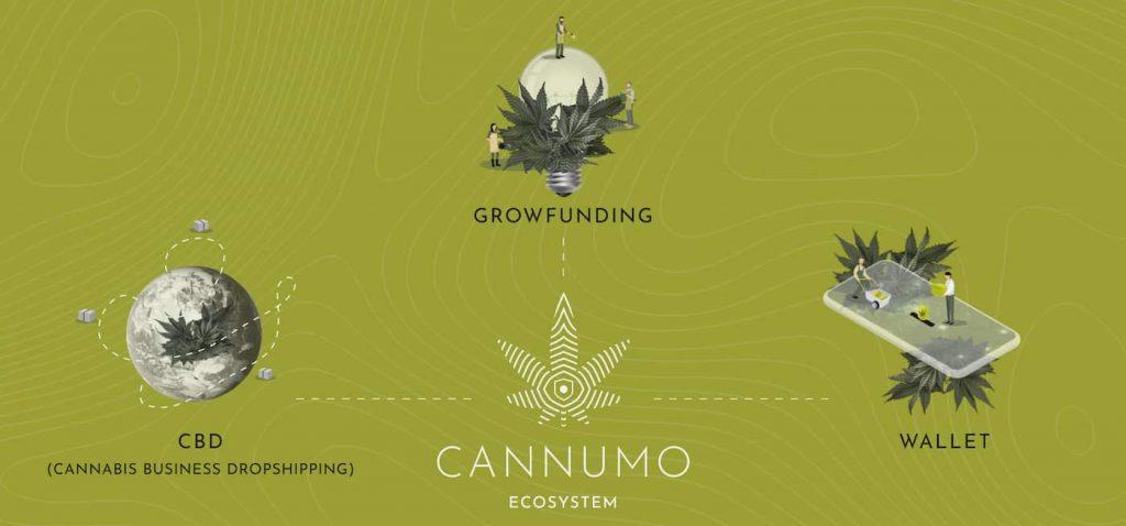cannumo blockchain