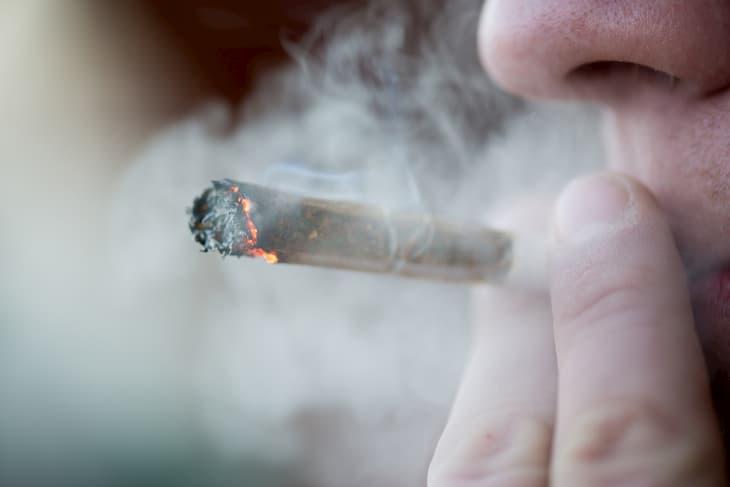 Cannabis Freddom Day