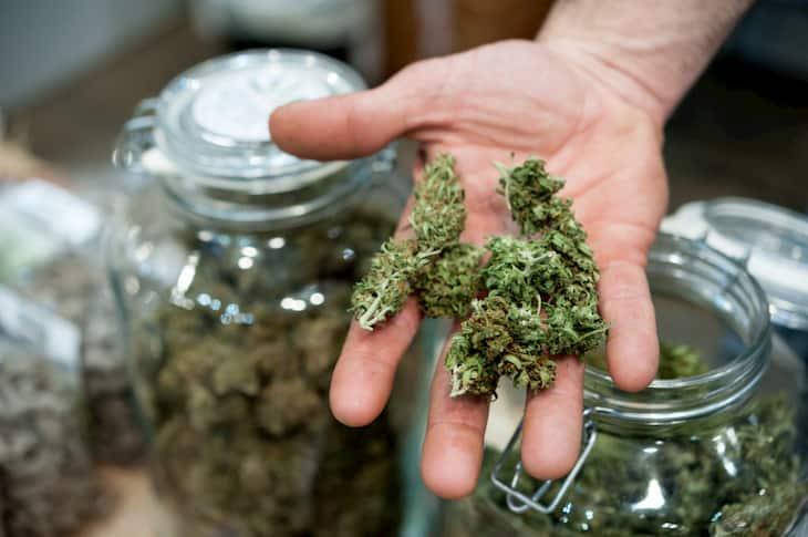 alabama medical marijuana