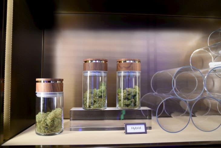 the bill to decriminalize cannabis
